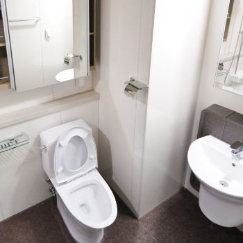 Toilet replace in London